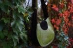 janis zielona lewy profil