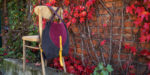 rogata małgorzata listopadowy las 4 szelki x zapięcie
